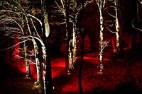 NORTHUMBERLAND LIGHTS, CRAGSIDE
