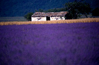 BARN IN PROVENCE, FRANCE